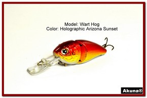 "Akuna Wart Hog 3.4"" Diving Jointed Fishing Lure in color ""Blaze"" [BP 107-84]"