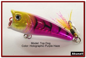 "Akuna Top Dog 2.4"" Popper Fishing Lure in Coral Snake [BP 48-87]"