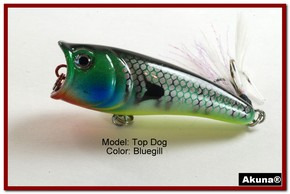 "Akuna Top Dog 2.4"" Popper Fishing Lure in Bluegill [BP 48-97]"