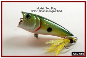 "Akuna Top Dog 2.4"" Popper Fishing Lure in Chattanooga Shad [BP 48-99]"