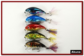 "Akuna Pack of 5 Ratt'l Bug 2.6"" Crankbait Fishing Lure - Clearance"