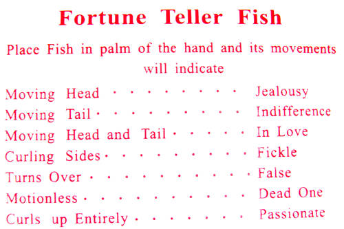 How To Make A Paper Hand Fortune Teller