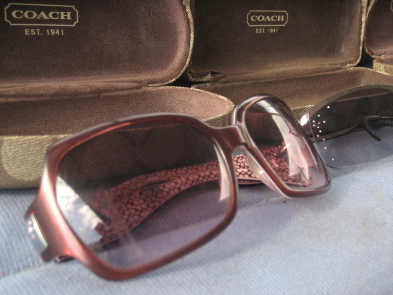 Alicia Sunglasses Coach Style S441