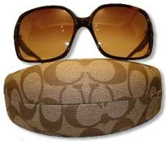Brown Alicia Sunglasses with Case