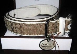 Coach Dog Collar Khaki White Mini Signature Large
