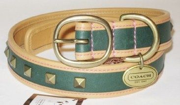 Coach Pyramid Stud Green Dog Collar XL