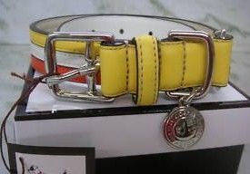 COACH Striped Yellow Orange Dog Collar Large 60407