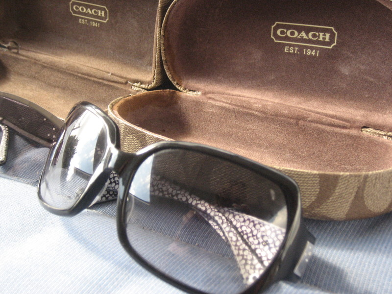 Coach Alicia S441 Sunglasses