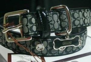 Coach Big Dog Signature Collar Black White