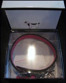 Coach Designer Dog Collar in Box