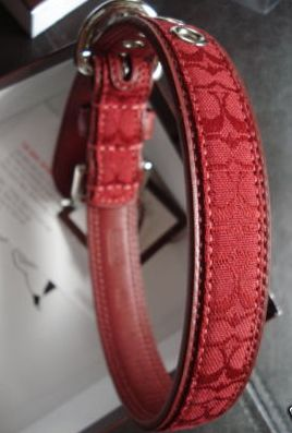 Signature Red Dog Collar