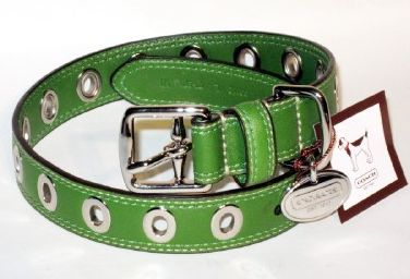 Coach Green Leather Fashion Dog Collar