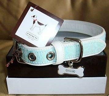 Coach Mini Signature Small Aqua Dog Collar