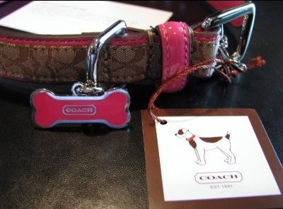 Coach Signature Dog Collar Close Up