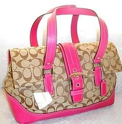 Coach Signature Tote Berry-Khaki 12644