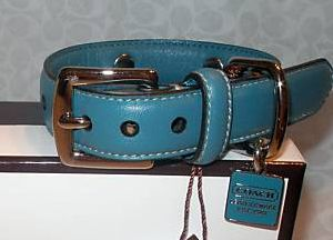 Coach Turquoise leather dog collar