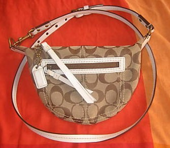 Crossbody Swingpack Hobo Bag