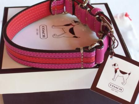 Designer Coach Dog Collar Striped Pink