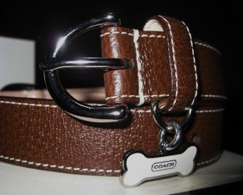 Designer Leather Dog Collar by Coach Brown