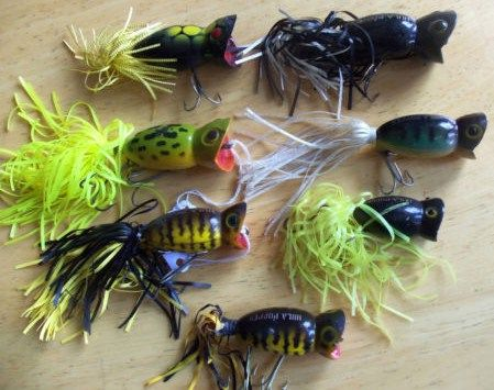 Lot of 7 Fred Arbogast Hula Popper Lures
