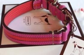 Pink & Red Striped Charm Dog Collar Large 60407