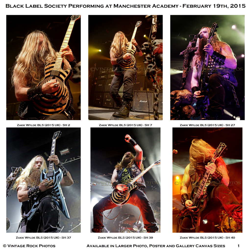 zakk wylde black label society photos 4x6 inch set of 30 prints