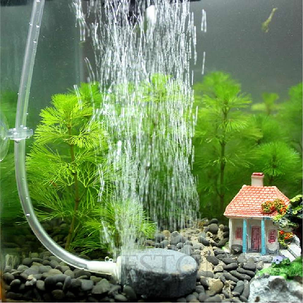 Aquarium fish tank pump - Aquarium Air Pipe Airstone Tube Balance Holder Proof Fish Tank Oxygen Pump Set