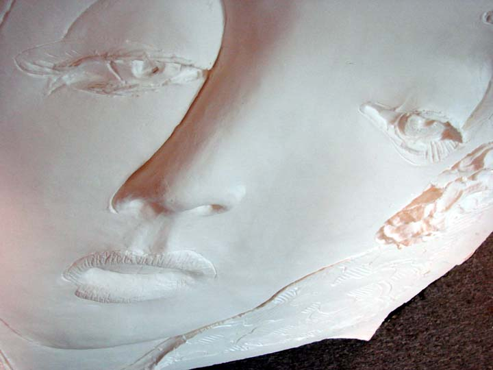 how to make cast of face