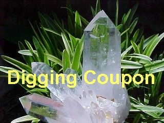DIG YOUR OWN CRYSTALS COUPON