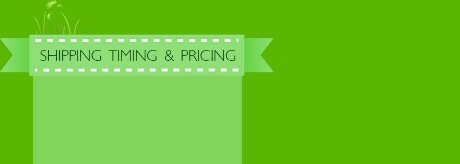 Shipping Timing and Pricing