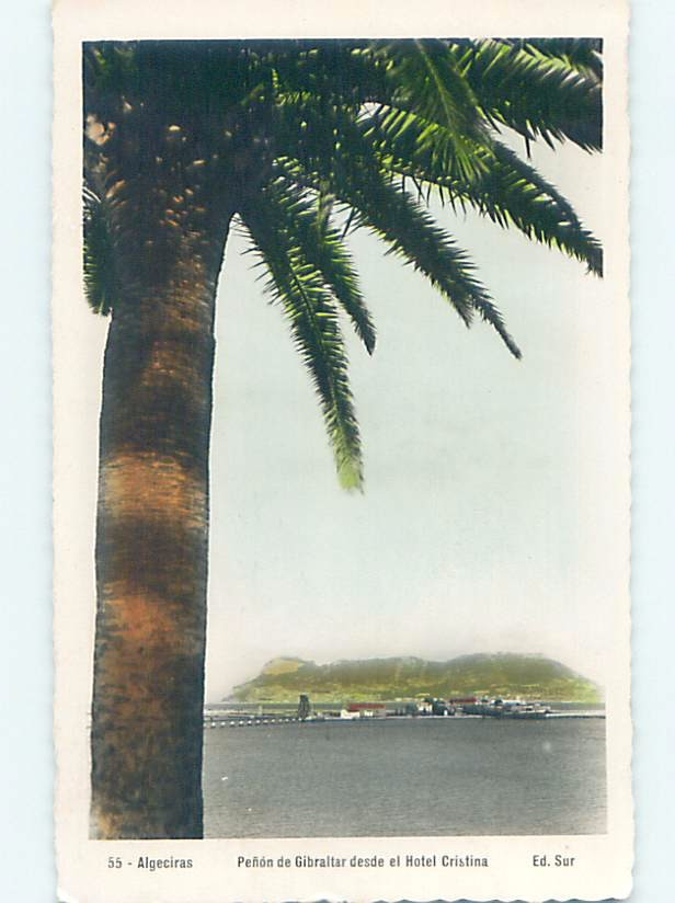 Pre-1980 ABSTRACT VIEW FROM BEHIND TREE Country Of Gibraltar hn6449