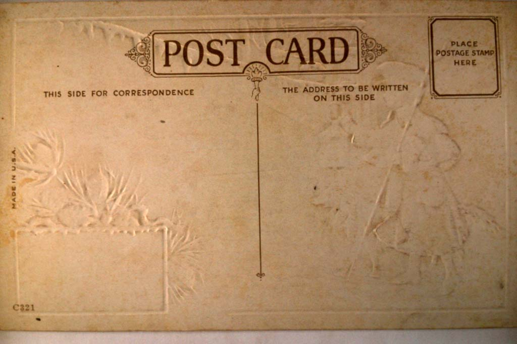 Unused pre-1920 COLLIE DOG & BOY great New Years postcard y3417