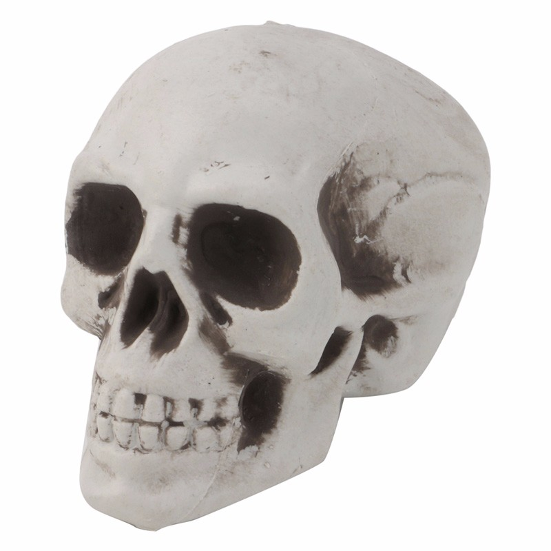 1pc plastic human skull decor prop skeleton head halloween coffee bars ornament - Halloween Skeleton Head