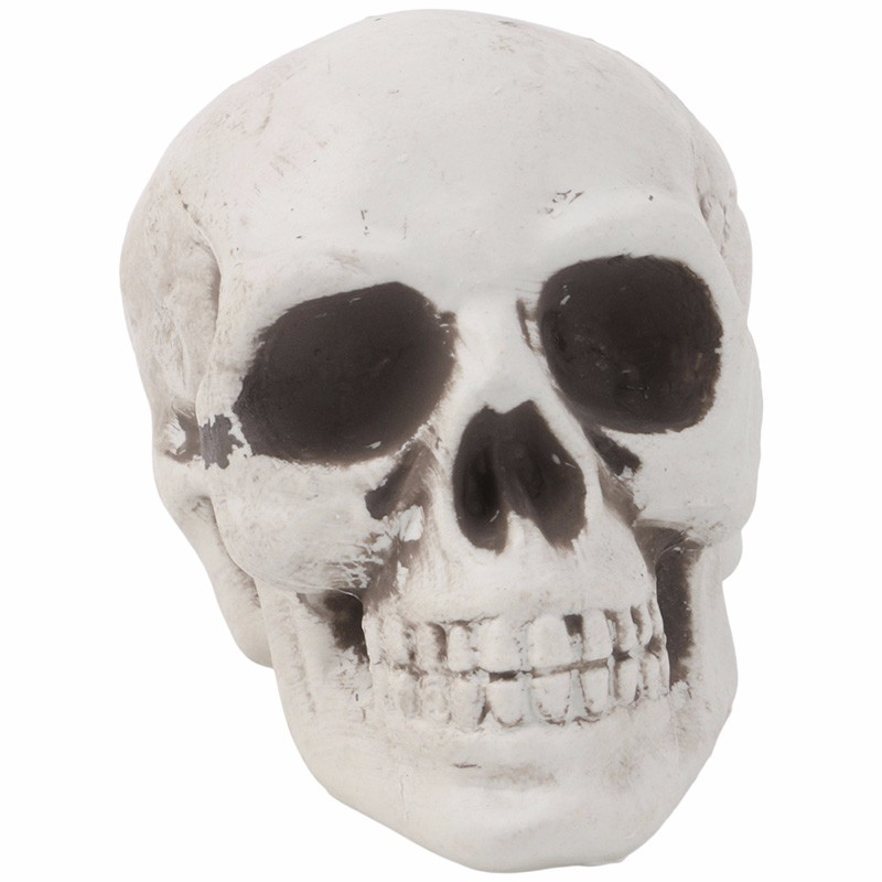 mini plastic human skull decor prop skeleton head halloween coffee bars ornament - Halloween Skeleton Head