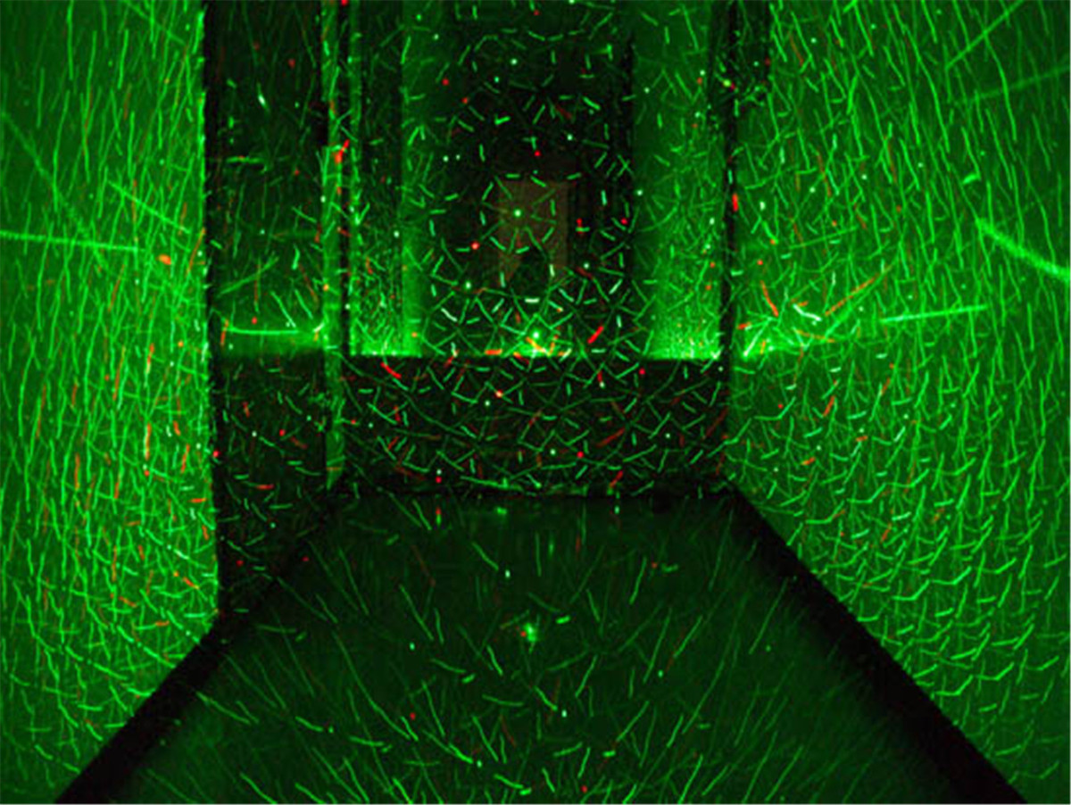 holographic laser projection The projector itself is based on holographic laser projection (hlp) lbo's system uses a coherent laser to illuminate an lcos that displays a hologram which diffracts the laser to create the original image.
