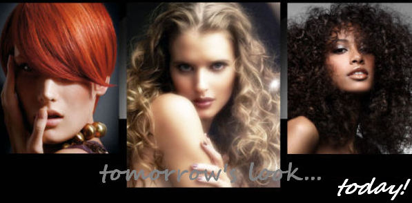 Jenny's HairSense The Wig Company
