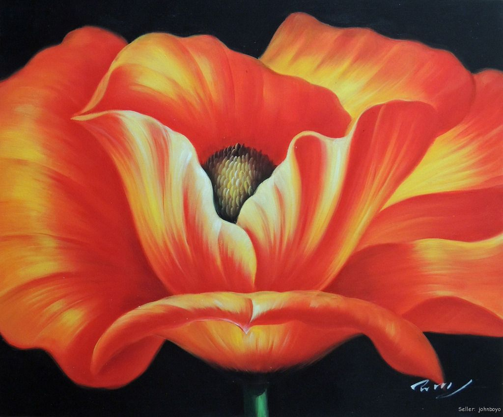red orange poppy single flower home accent piece 20x24 oil