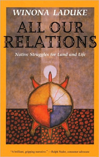 the struggles and resilience of the native indians in america