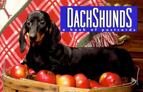 Thumbnail of Dachshunds: A Book of Postcards