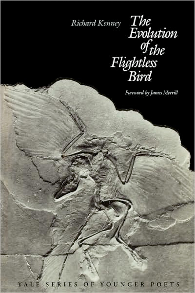 an analysis of the causes of evolution of flightless birds