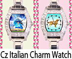 Cz Ladies Italian Charm Watch