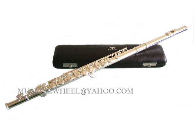Best Flute Brands http://www.ebay.com/itm/Band-FLUTE-SILVER-Plated-Free-Case-Best-Value-NEW-/370643688864