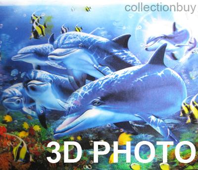 3d dolphin picture wall decor photo home decor picture ebay dolphin wall decal vinyl dolphin sticker for home decor