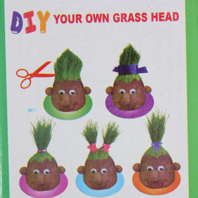 how to make grass seed germinate faster