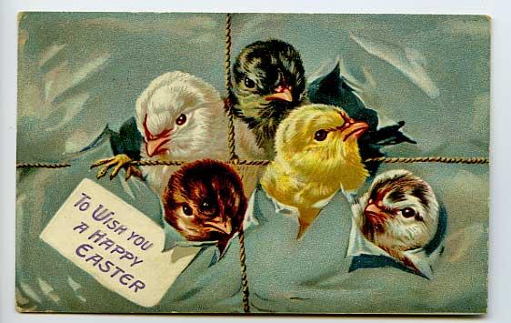 Tuck-Easter-Chicks-Rope-Border-Postcard