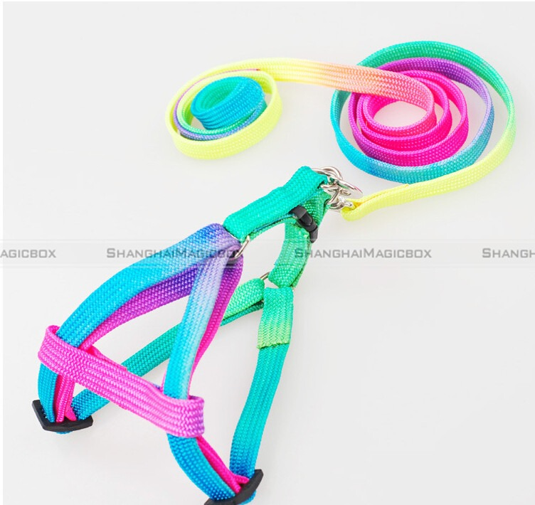 Small-Pet-Rabbit-Cat-Dog-Nylon-Harness-Collar-Belt-Leash-Lead-Adjustable-Rainbow