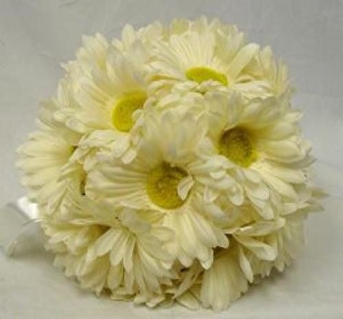 Ivory Flower Ball: Flower Ball IVORY CREAM Gerbera Daisy Pew Bow Wedding Silk