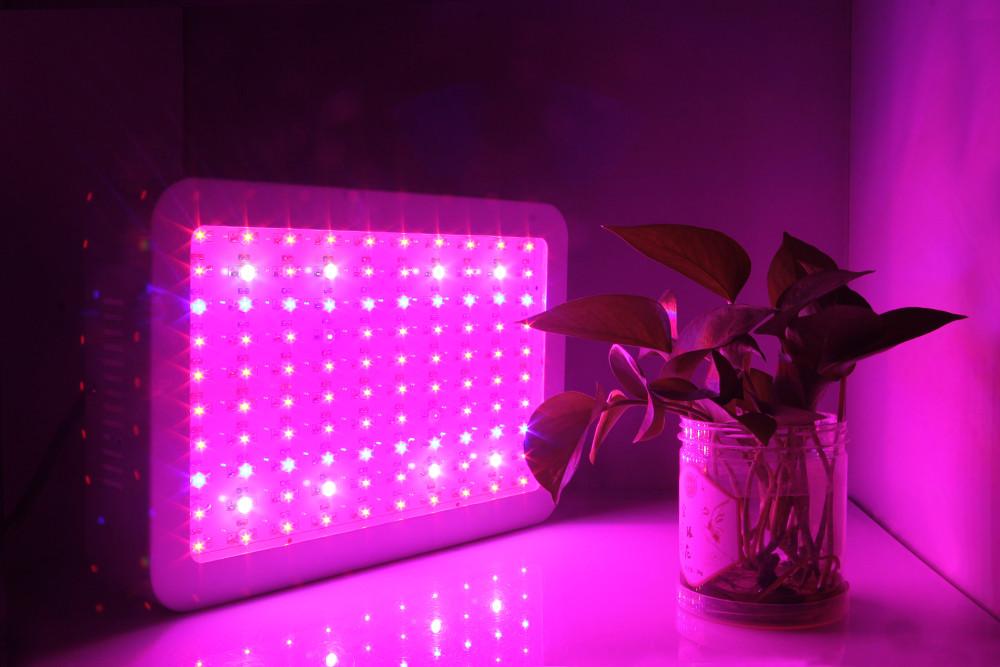 1000w full spectrum led grow light vege flower hydroponics indoor. Black Bedroom Furniture Sets. Home Design Ideas