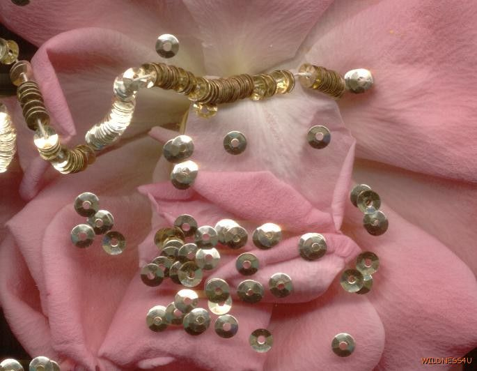 FRENCH ANTIQUE METALLIC SEQUINS Gold MICRO 3mm FLUTED COUTURE Spacers DOLL SIZE
