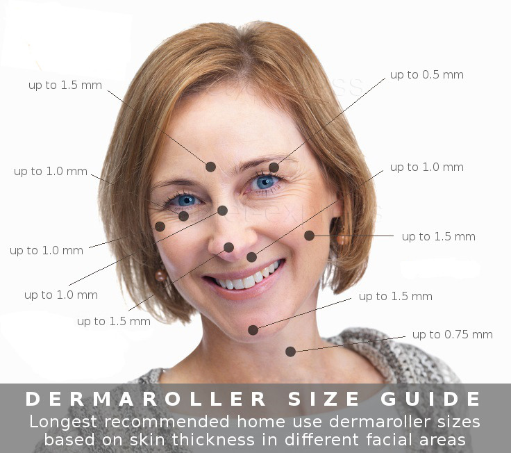 New 540 Microneedle Derma Roller Micro Needle Pen Therapy Skin Recovery 32Pcs Collagen Tablets Skin Whitening Lightening for Fruit Mask Machine